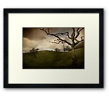 Dead Tree Framed Print