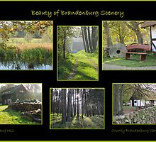 Beauty of Brandenburg Scenery by orko