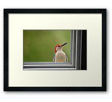 CW a/k/a Crazy Woodpecker Framed Print