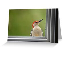 CW a/k/a Crazy Woodpecker Greeting Card