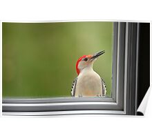 CW a/k/a Crazy Woodpecker Poster