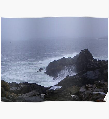 The Rocky Coast of Maine Poster