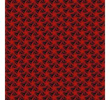 Floral Red Background Photographic Print