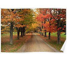 Autumn Wonderland II Poster