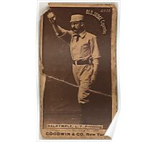 Benjamin K Edwards Collection Abner Dalrymple Pittsburgh Alleghenys baseball card portrait Poster