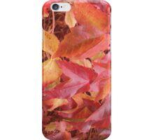 Autumn Leaves iphone case iPhone Case/Skin