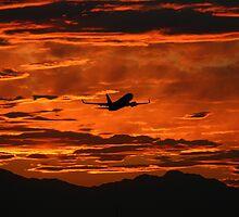 Phoenix Sky Harbor Airport Sunset, Boeing 737 by Stephen Gay
