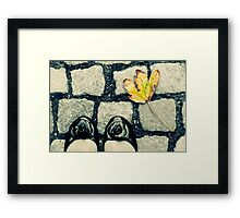 Setting Foot in the Fall Framed Print