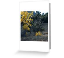 The Last Golden Tree Greeting Card
