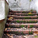 Mare Island Steps by RWhitfield