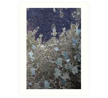 Rock Lichen  Art Print