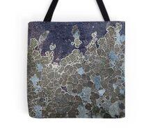 Rock Lichen  Tote Bag