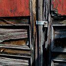Red Door and Lock by jrier