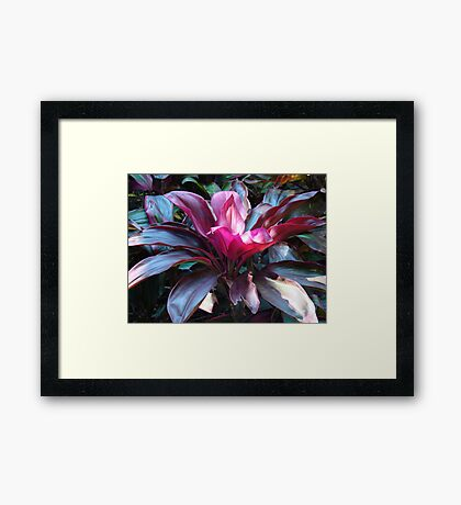 Tropical Foliage Framed Print