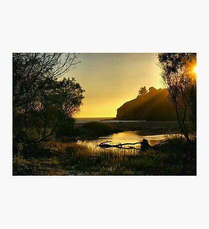 Muir Beach Photographic Print