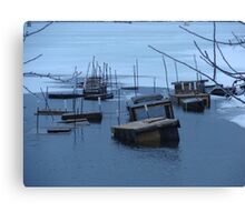 Winter Bait Traps Canvas Print