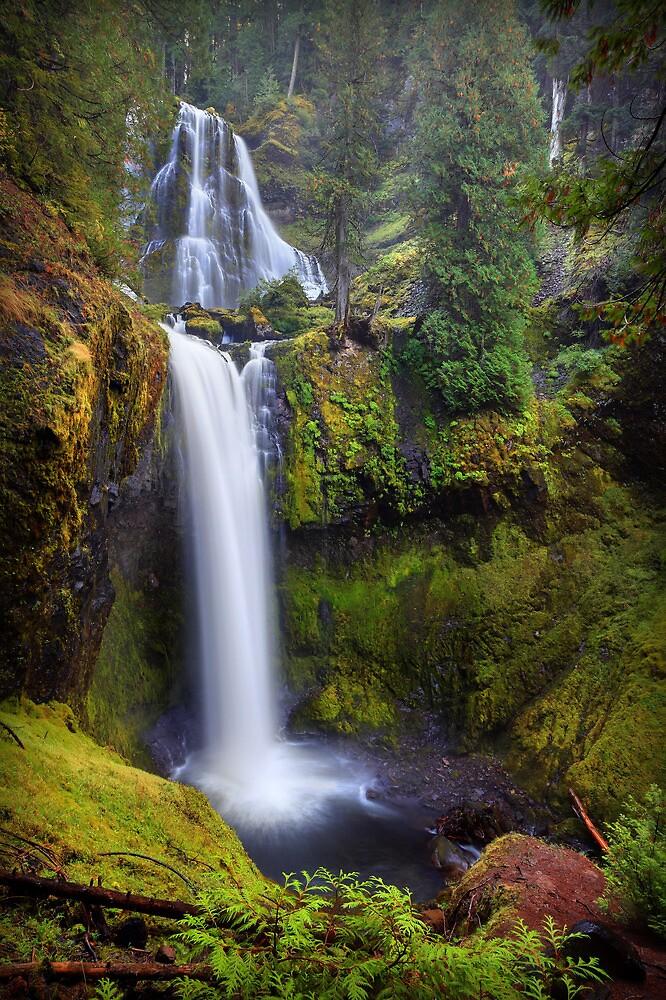 Falls Creek Falls I by Tula Top
