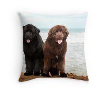 Newfoundland Dogs Throw Pillow