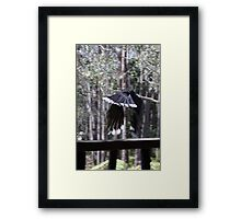 the thief escapes! Framed Print