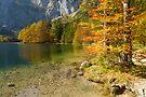 Fall at the Lake by Walter Quirtmair