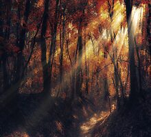 if you smile by ildiko neer