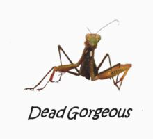 Praying Mantis with Dead Gorgeous Text by taiche