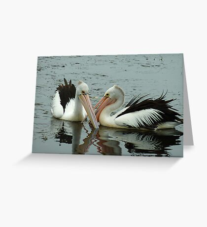 Pelicans on Donna's Lake! Greeting Card
