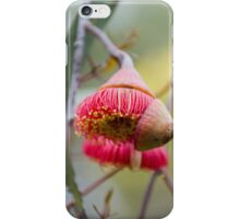 Silver Princess iPhone Case/Skin