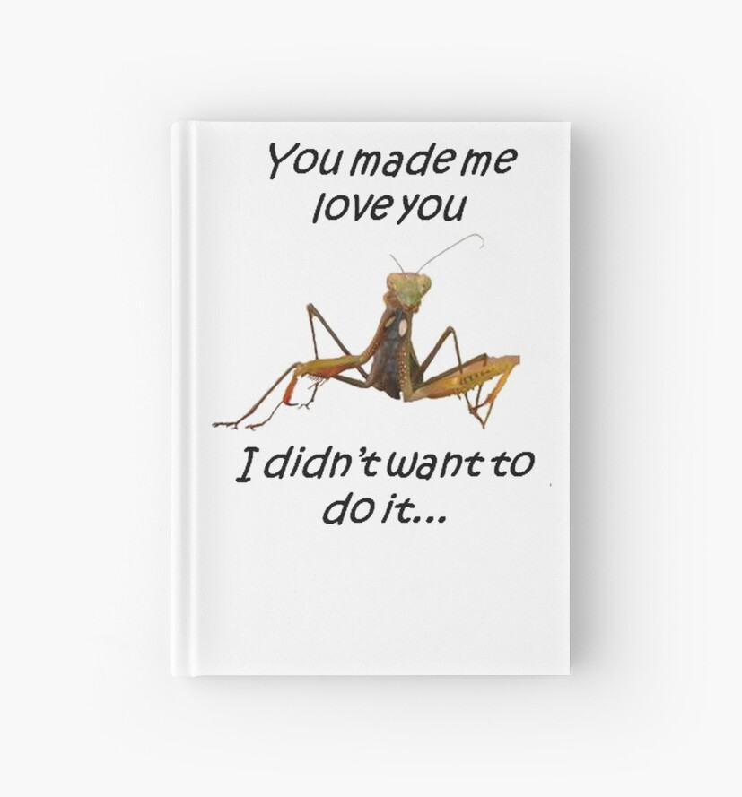 Praying Mantis with You Made Me Love You Text by taiche