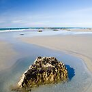 Fossil Point, New Zealand by SusanAdey