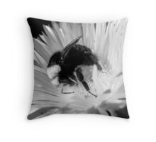 #996 Throw Pillow