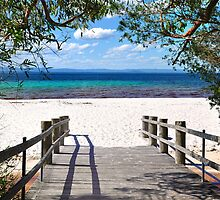 Green Patch Beach by Olivelle