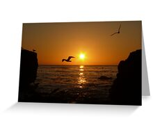 #1017 Greeting Card