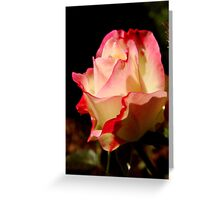 Fall Roses II Greeting Card