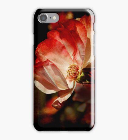 Rose iPhone Case iPhone Case/Skin