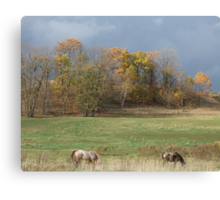 Grazing Under Stormy Skies Canvas Print