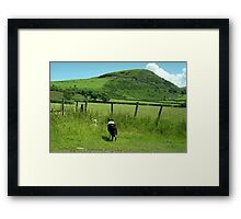 Indy and the Lost Sheep Framed Print