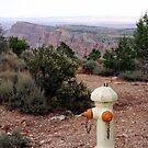 Canyon Hydrant iPhone Case by Judi FitzPatrick