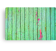 Green plank door Canvas Print