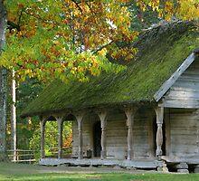Open-air museum by fotorobs