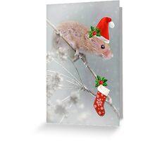 All Set for Santa Greeting Card