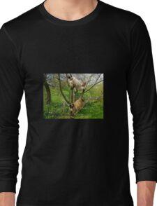 Feline fun times Long Sleeve T-Shirt