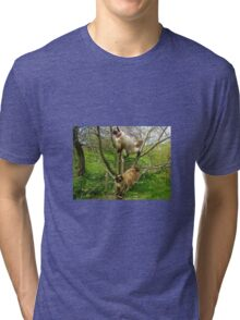 Feline fun times Tri-blend T-Shirt