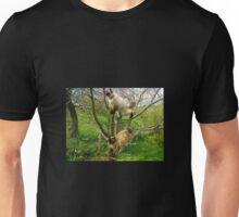 Feline fun times Unisex T-Shirt