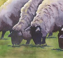 Grazing (sheep series 1) by Marsha Elliott