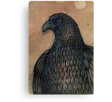 The Unruffled Eagle Canvas Print