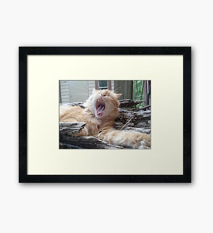 WAKE UP CALL Framed Print