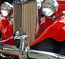 1952 MG TD Grille  ( best viewed large!)  by Heather Friedman