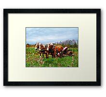 Serious Horse Power Framed Print