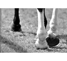 Equestrian 4x4 Photographic Print